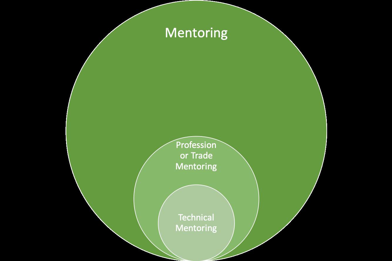 Introducing technical mentoring